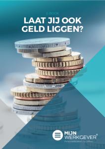 ebook mijnwerkgever.nl